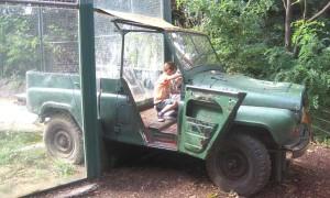 Jeep-på-Budapest-zoo